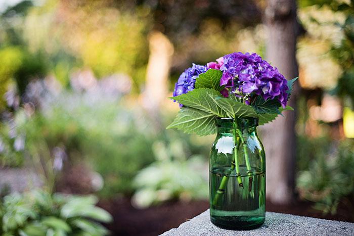 portland-intimate-wedding-photographer-25