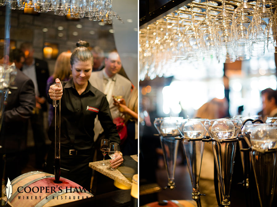 coopers-hawk-orlando-fl-6