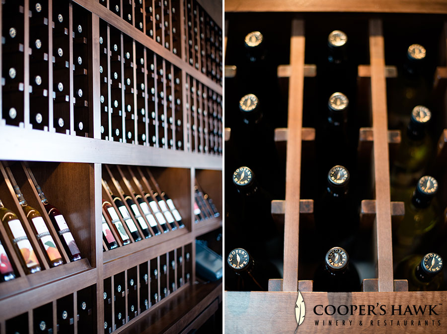 coopers-hawk-orlando-fl-8